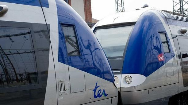 Lyon: trafics TER et TCL perturbés ce lundi