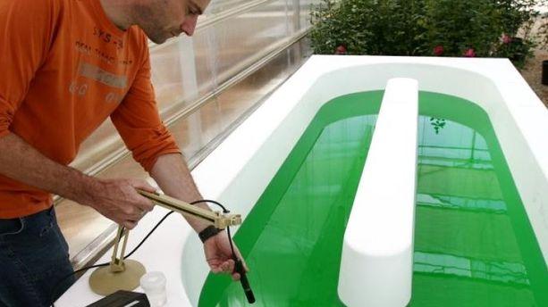 A Sophia-Antipolis, on invente les microalgues : le carburant du futur