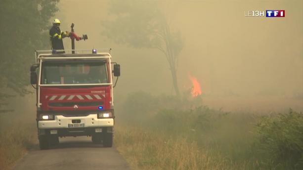 Incendie en Gironde : 295 hectares de pins partis en feu
