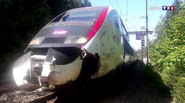 Jura : un troupeau de vaches percuté par un TGV