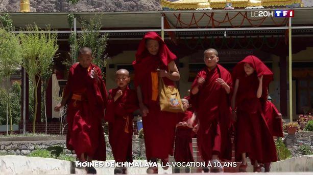 Moines de l'Himalaya : la vocation à dix ans - LCI