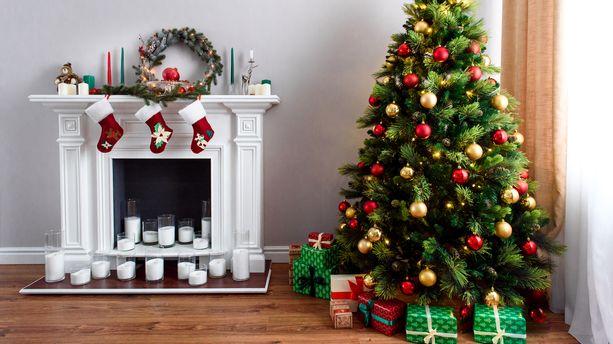 Noël : comment bien choisir son sapin ?