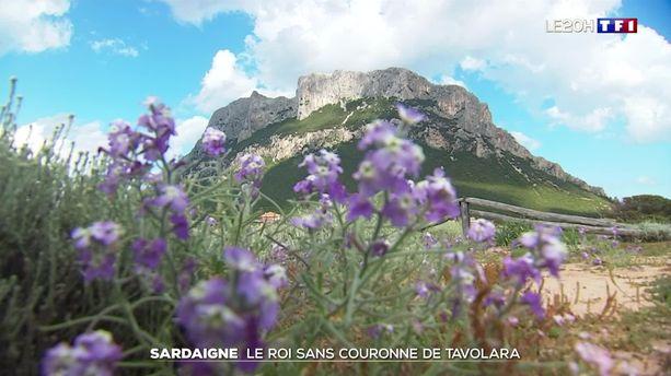 Sardaigne : le roi sans couronne de Tavolara